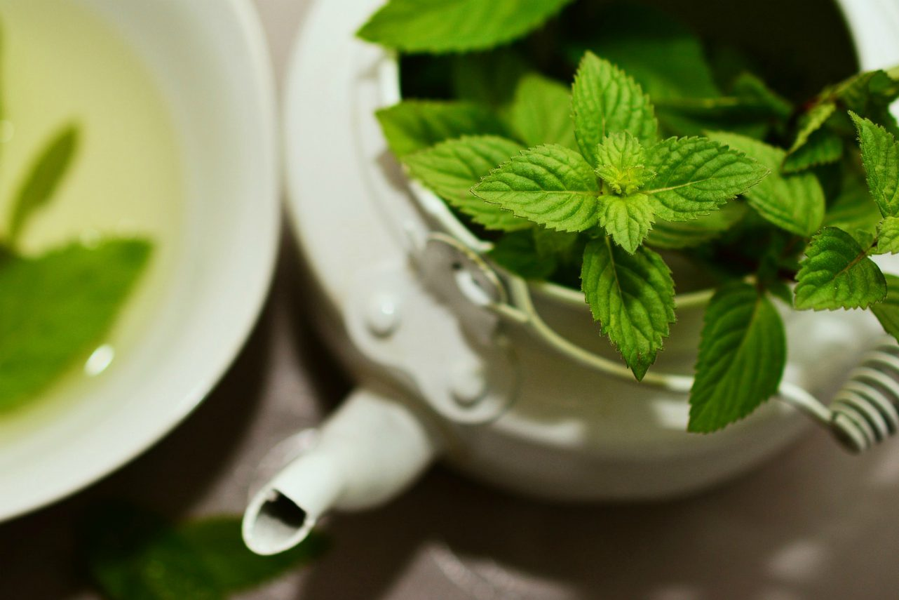 An image of fresh peppermint in a white teapot