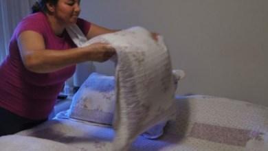 """Photo of IBGE: mulher tem peso importante no chamado """"trabalho invisível"""""""