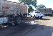 Photo of PM participa de operação conjunta visando coibir o transporte irregular de frangos