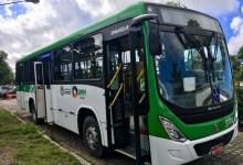 Photo of Linha 503 volta a operar no SIMM a partir de segunda-feira (03)