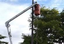 Photo of Sima inicia manutenção da iluminação da orla lagunar