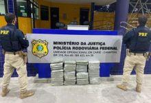 Photo of PRF apreende 50kg de maconha que seriam entregues em Maceió