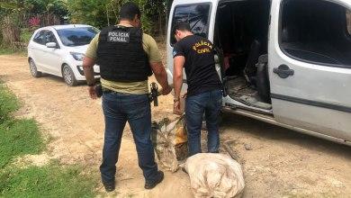 Photo of OPERAÇÃO CONJUNTA: Homem é preso com com 40 kg de maconha no Riacho Doce, em Maceió
