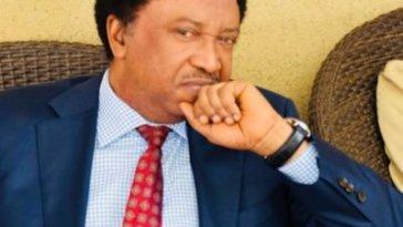 JUST IN: EFCC Arrests Senator Shehu Sani