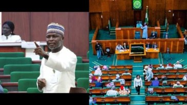House Of Rep Member Threatens To Resign Over Insecurity In North-East Region