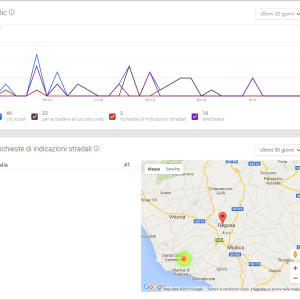 local seo local strategy – google my business – case history