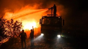 Four killed as wildfires sweep Turkey, over 60 such events reported in a week
