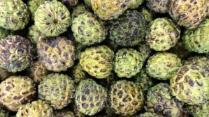 Dispute over fruit: Taiwan threatens to take China to WTO over suspension of sugar apple imports
