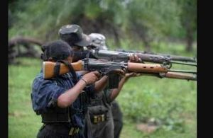 Maoist camp busted in Odisha's Malkangiri district
