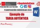 PLANIFICACIÓN CURRICULAR 2020: Ejemplo de TAREA AUTÉNTICA [WORD]
