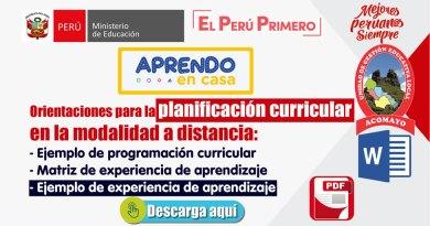 Planificación Curricular en la modalidad a distancia [Ejemplos de programación reajustado y experiencias de aprendizaje][RVM Nº 093-2020-MINEDMINEDU]