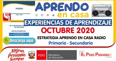 EXPERIENCIAS DE APRENDIZAJE – RADIO – Octubre 2020 [Primaria – Secundaria][PDF][Gratis]