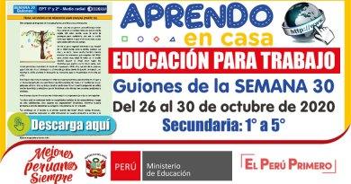EDUCACIÓN PARA EL TRABAJO – SECUNDARIA: Guiones de la SEMANA 30 (Del 26 al 30 de octubre de 2020) [1° a 5° de Secundaria]