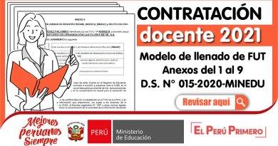 CONTRATO DOCENTE 2021: Modelo de llenado de FUT y Anexos del 1 al 9 [Contratación por resultados de la PUN y Evaluación de expedientes][D.S. N° 015-2020-MINEDU]