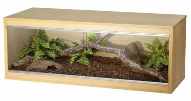 correct ball python terrarium size and setup
