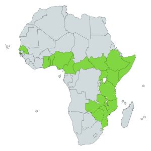 Plated Lizard natural distribution map - Africa