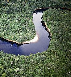 <B>Giro di vite in Amazzonia<br>la foresta a numero chiuso</B>
