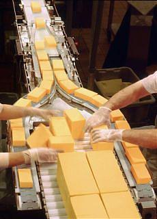 Sulle rotte del formaggio avariato tra porti, società off shore e camorra