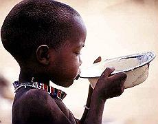 """La Fao denuncia """"l'emergenza cibo"""" Oltre 925 milioni di affamati nel mondo"""