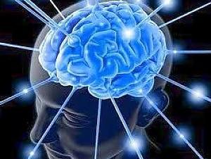"""Cervello, scoperto l'angolo delle emozioni """"Così si custodiscono i ricordi dolorosi"""""""