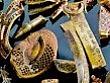 NAT GEO / LE IMMAGINI  Il misterioso tesoro dello Staffordshire