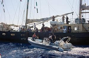 Estelle, arrivato a Fiumicino l'italiano espulso da Israele