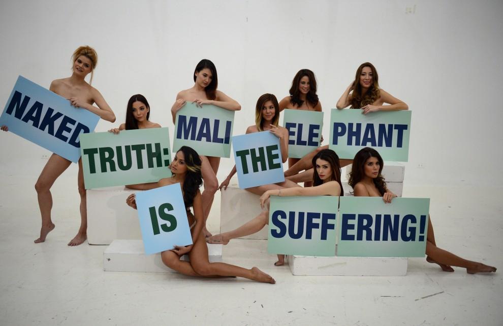 Manila, la protesta delle modelle: in difesa dell'elefante