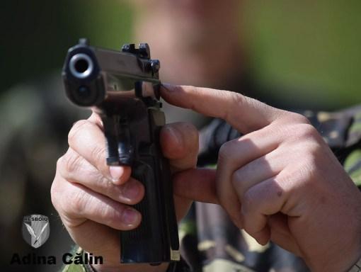 Prezentare arma 16