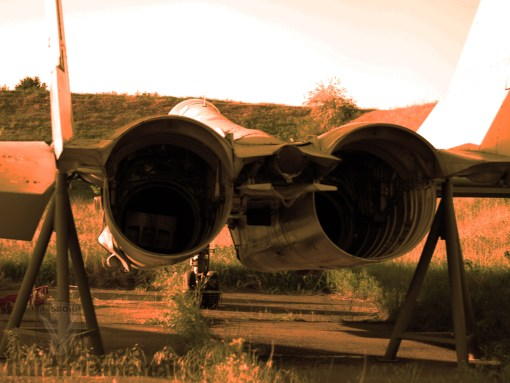 MiG-29 romanesc, alt MiG-29 romanesc