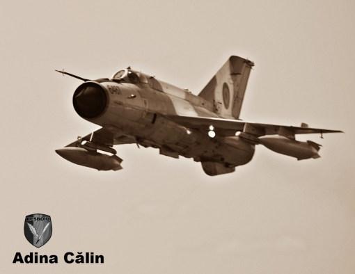 MiG 21 Gica Stancu (9)