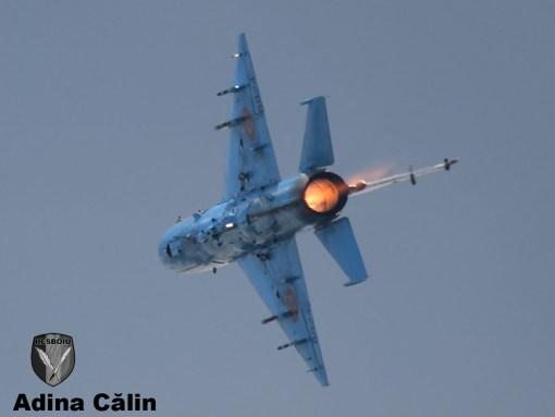 MiG 21 (19)