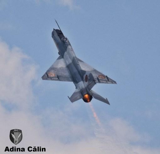 MiG 21 (21)