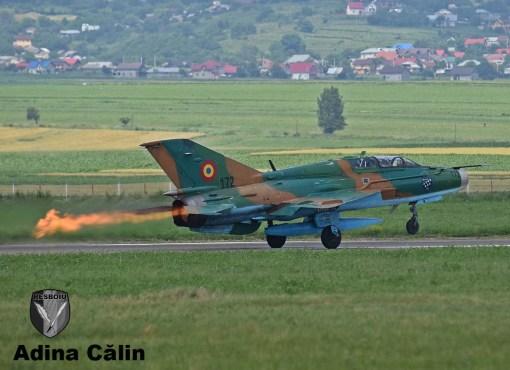 MiG 21 (8)