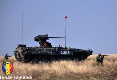 """Batalionul 300 Infanterie Mecanizată """"Sfântul Andrei"""""""
