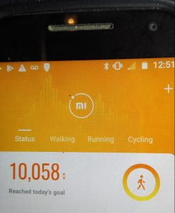 Terry's activity monitor Day 10