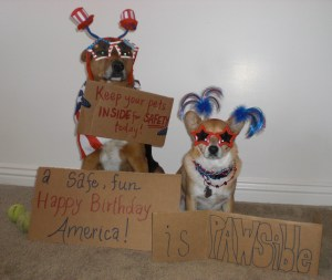 Chance and Parker's PAWSibility #41 - A safe, fun Happy Birthday, America!