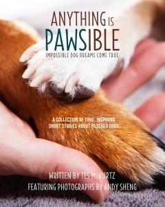Anything Is PAWSible--Impossible Dog Dreams Come True