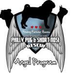 Angel Program Logo