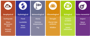 Natural disaster subgroup classification | Download