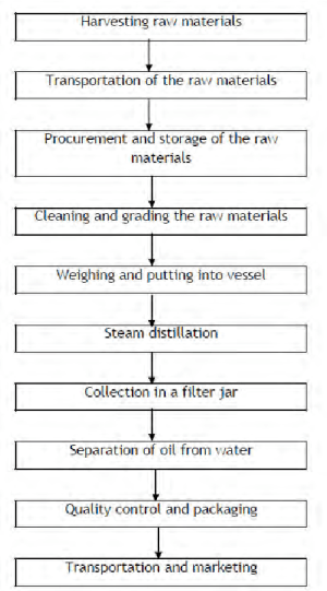 Flow chart of the essential oil production process