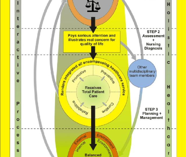 Figure A Holistic Healthcare Model For A Higher Education Healthcare Service