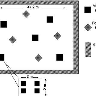 Plot design indicating random sampling locations for the ...