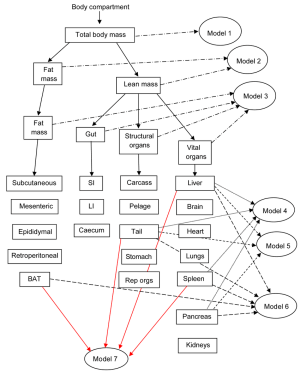 Diagram to show the interrelationships of the different