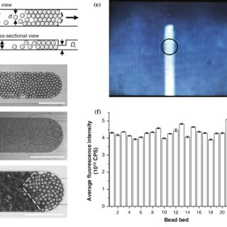 (PDF) Portable bead-based fluorescence detection system ...