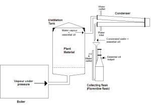 Essential oil steam distillation diagram | Download