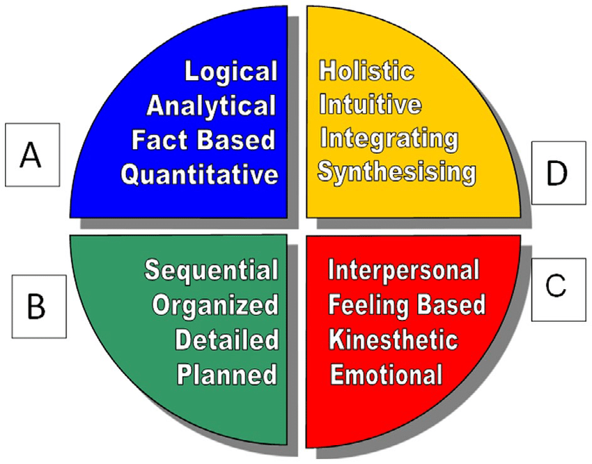 The Whole Brain Model With The Four Quadrants Of Thinking