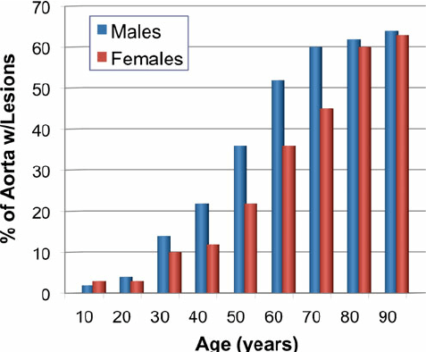 Effect of age and gender on the degree of atherosclerosis in the human aorta. Autopsy studies measured the area of the human aorta exhibiting raised atherosclerotic lesions as a function of the age and gender of the subject. Adapted from Supplementary data in Vihert (1976)