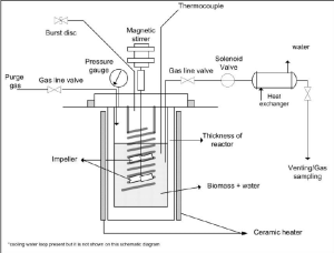 Schematic diagram of autoclave reactor for hydrolysis of