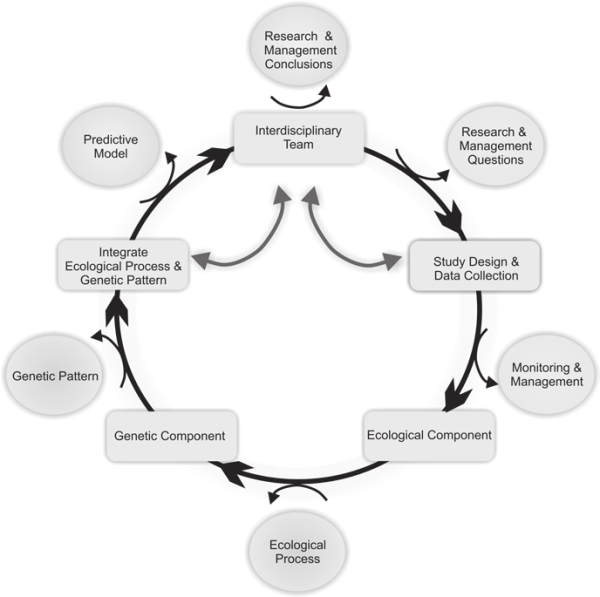 Conceptual diagram of steps for effective ...