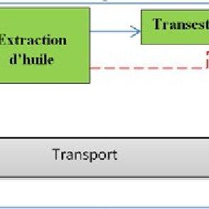 les chaines logistiques etendues de filieres jatropha